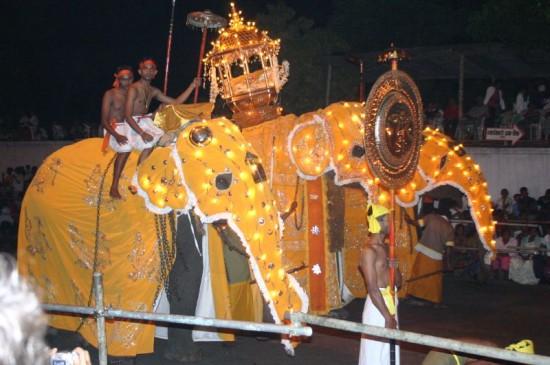 The_good_luck_elephant